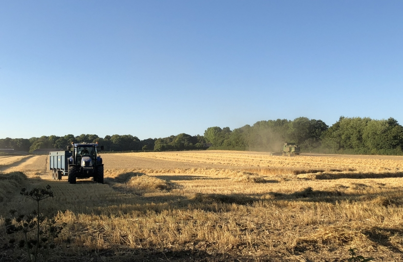 Harvest in the Itchen Valley